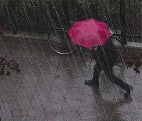 Umbrella Project (2011)